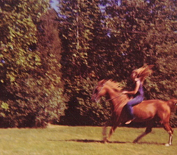 Donna-Marie-on-her-horse1